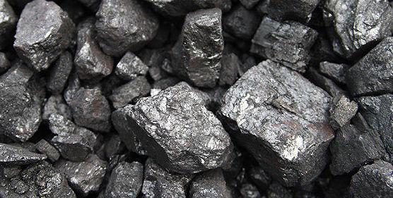 Venta de leña y carbón