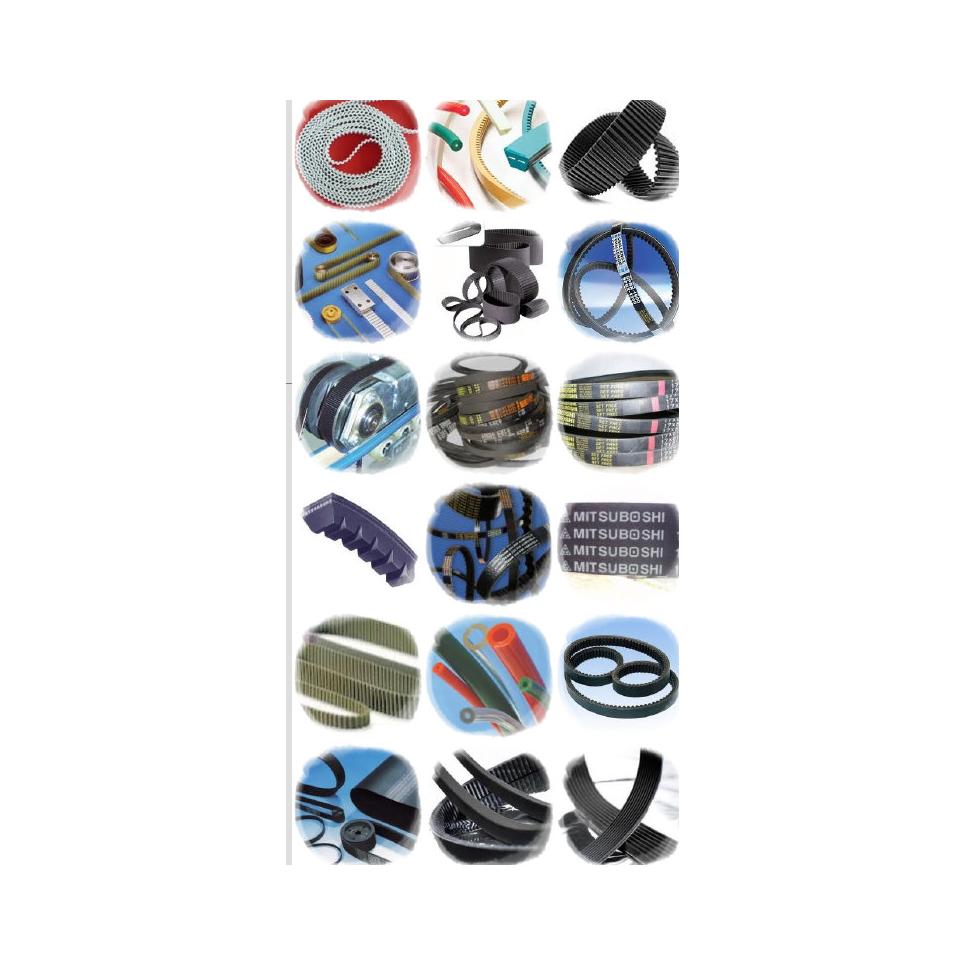 Correas: Productos de Rodamientos del Segura
