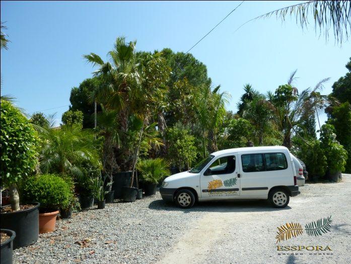 Jardinería y paisajísmo en Málaga
