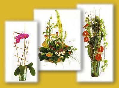 Flor y planta natural: Catálogo de Floristería Mª Teresa