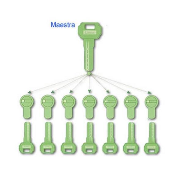 Amaestramiento sencillo: Servicios de Cerrajería Locksmith Carlos Neira