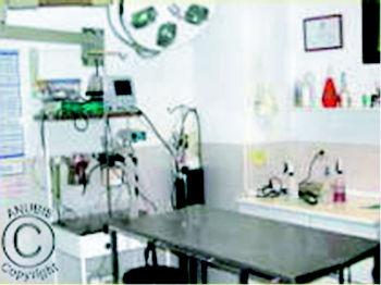 Foto 4 de Veterinarios en Pozuelo de Alarcón | Anubis Clínica Veterinaria