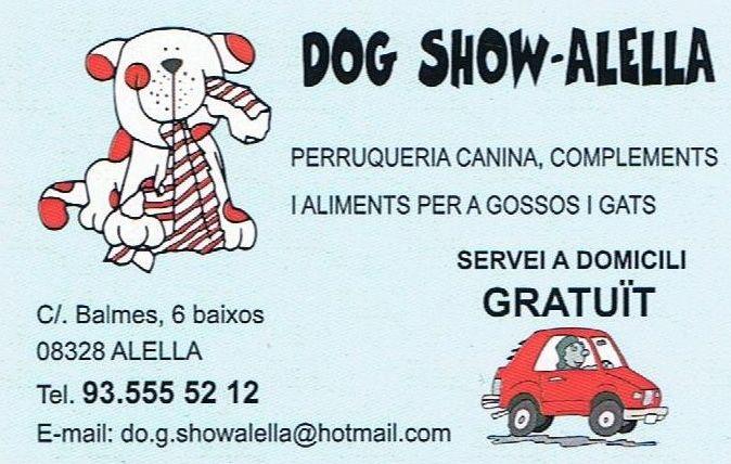 Foto 19 de Peluquerías caninas en Alella | Dog Show - Alella