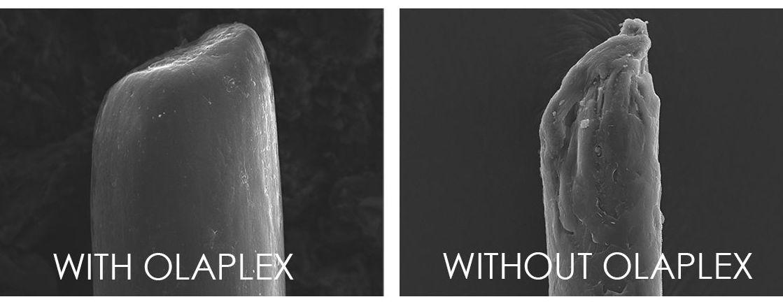 La fibra capilar antes y después del uso con Olaplex