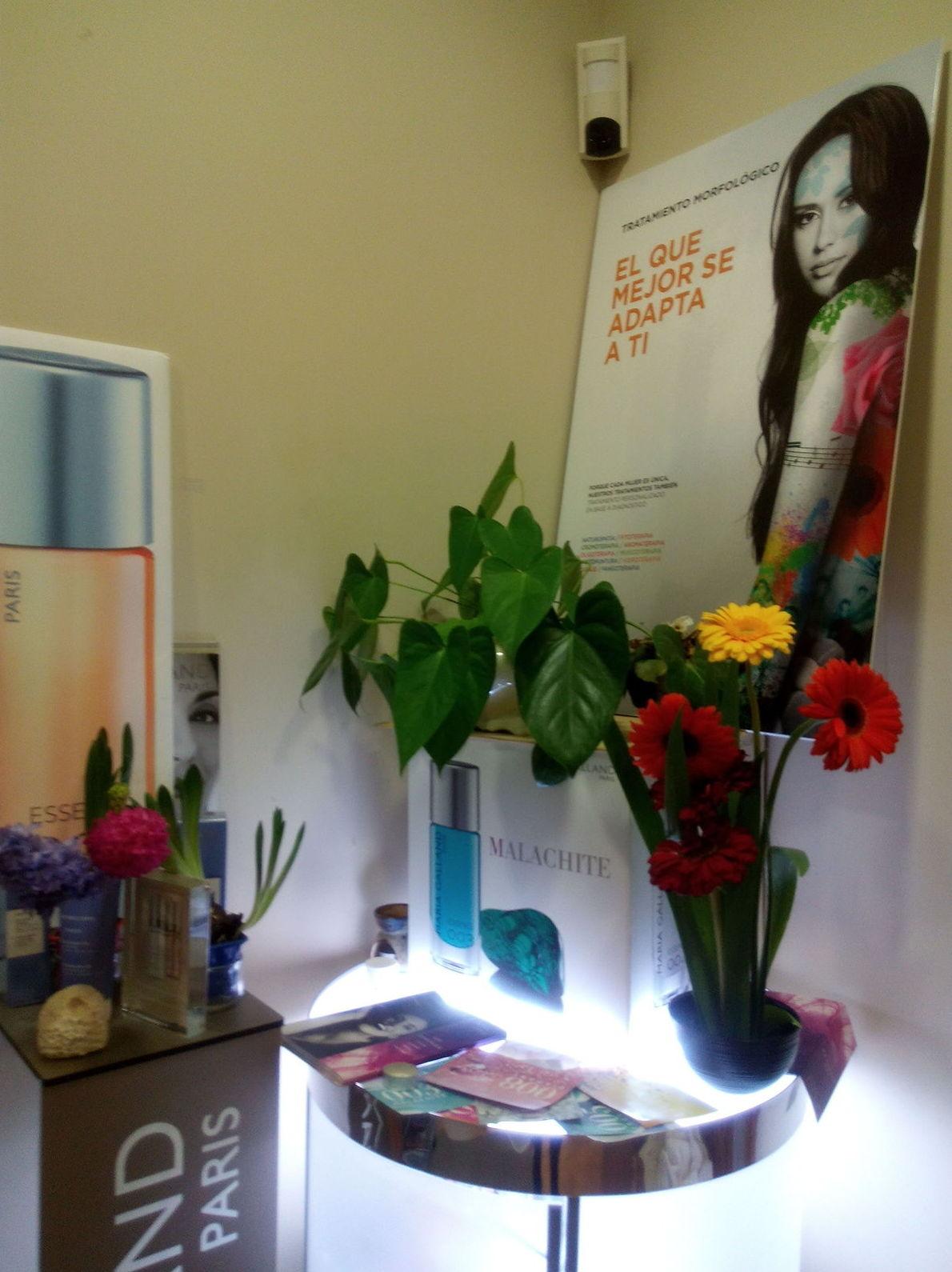 Nos encantan las flores y el color