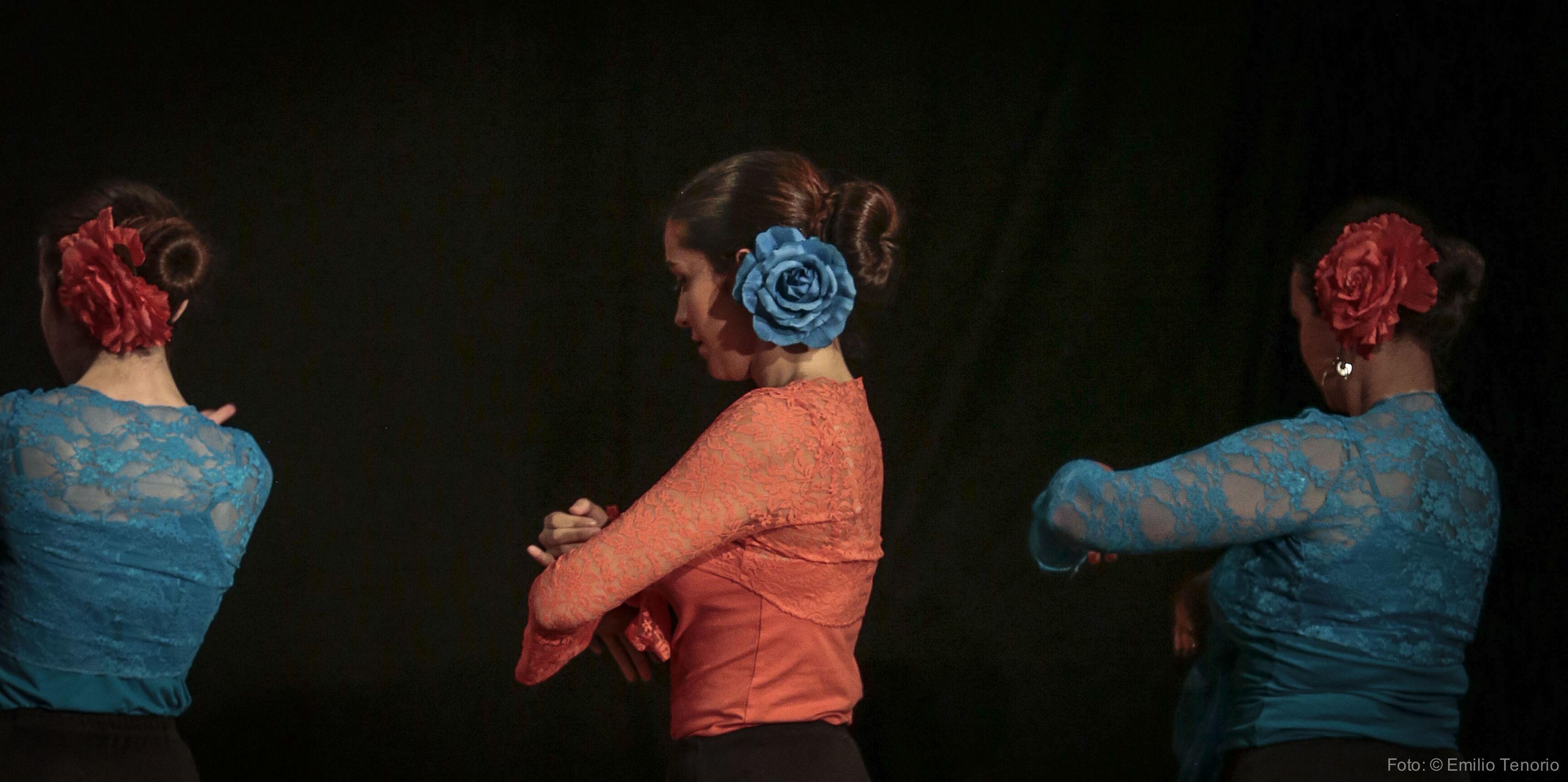 Clase de iniciación al Flamenco de 13 a 14 horas los lunes en el Estudio de Danza Stylo