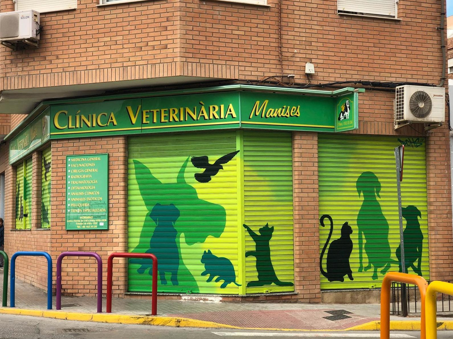 clinica veterinaria manises