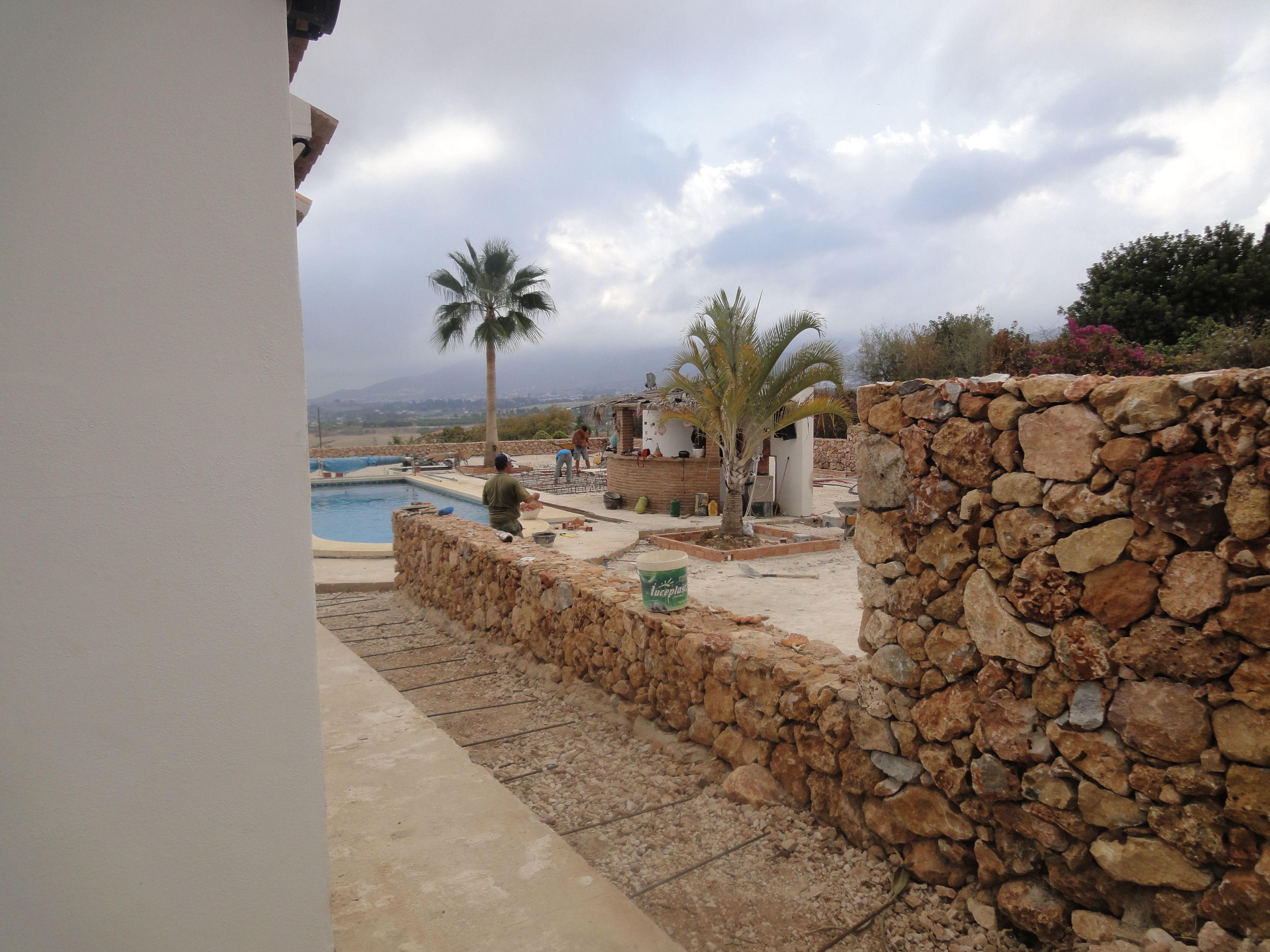 Realización de jardines con palmeras en Málaga