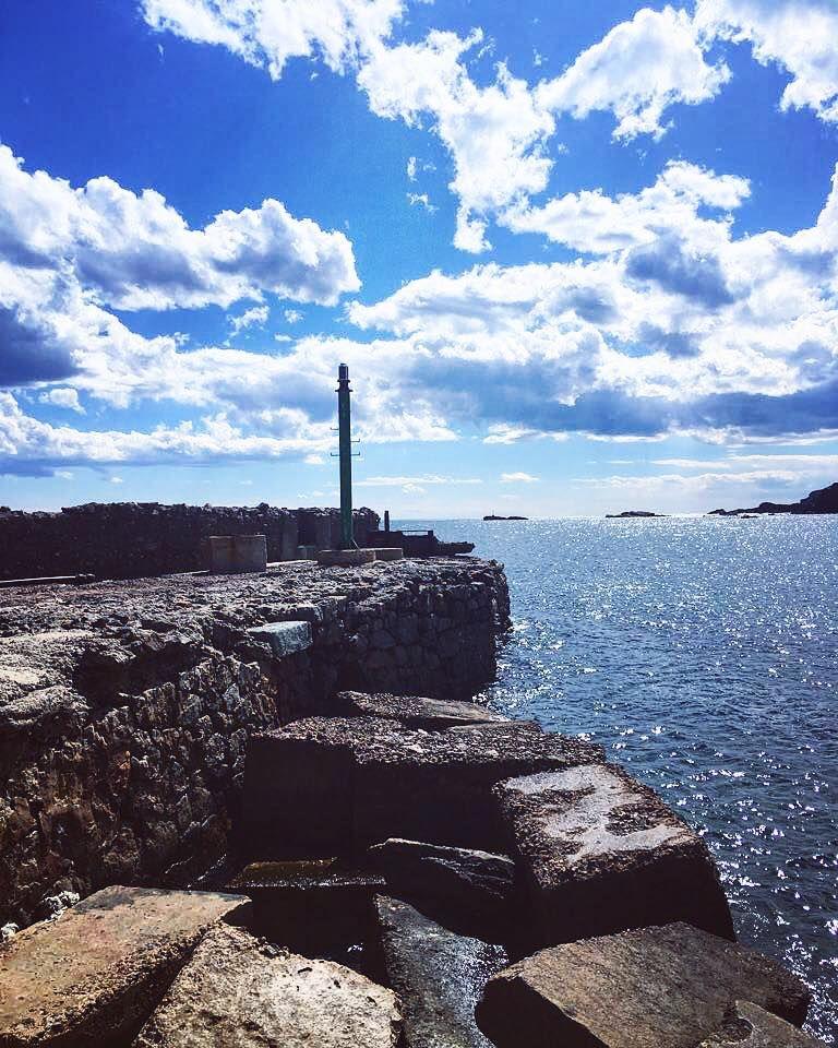 Pescados, arroces, terraza vistas al mar