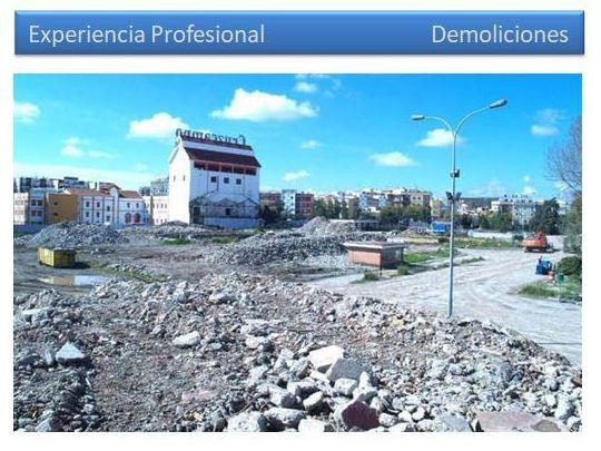Demolición y descontaminación del suelo de la fábrica Heineken en Sevilla