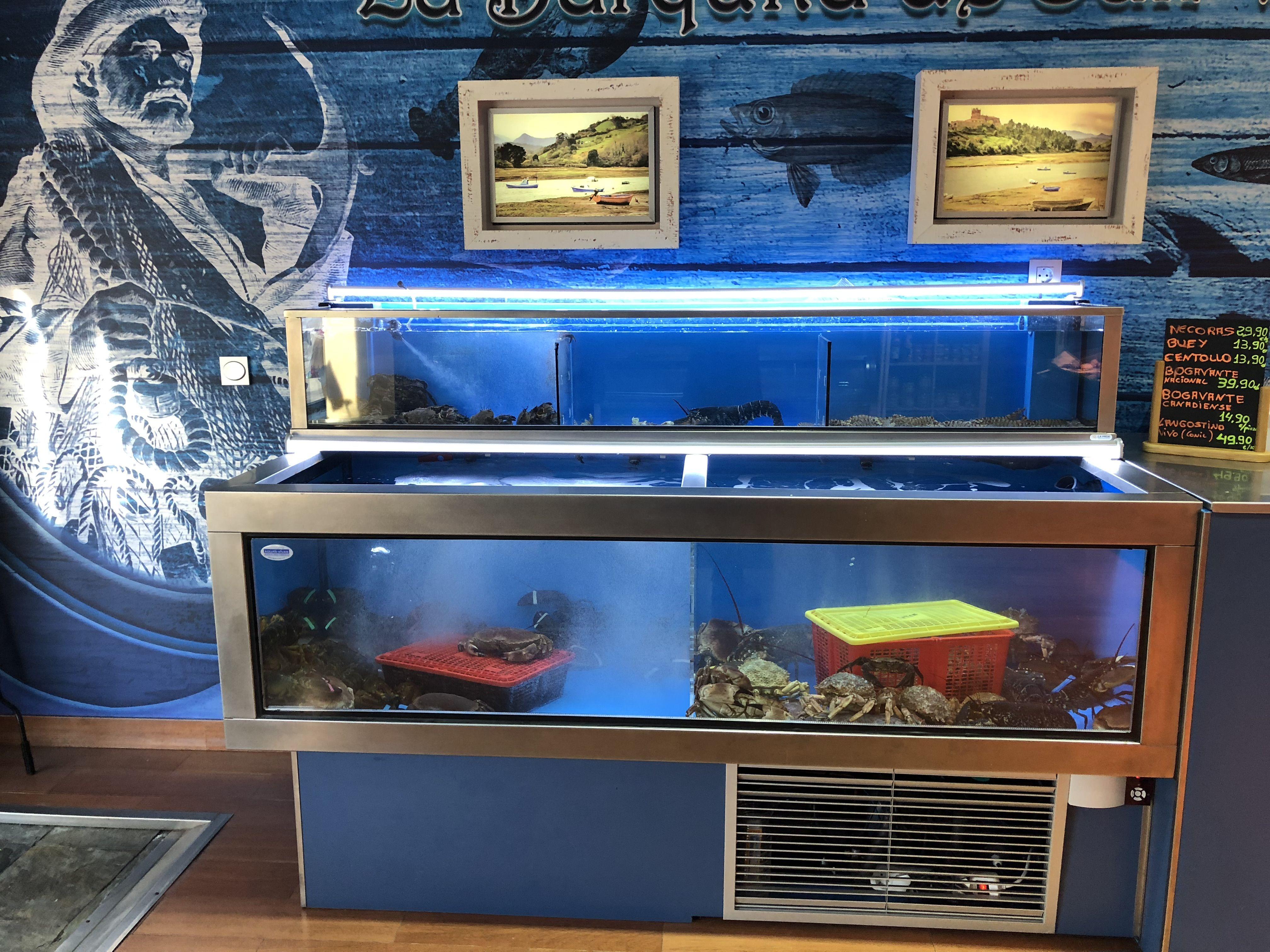 Foto 1 de Venta de pescado y mariscos de calidad suprema en Valladolid | La Barquita de San Vicente
