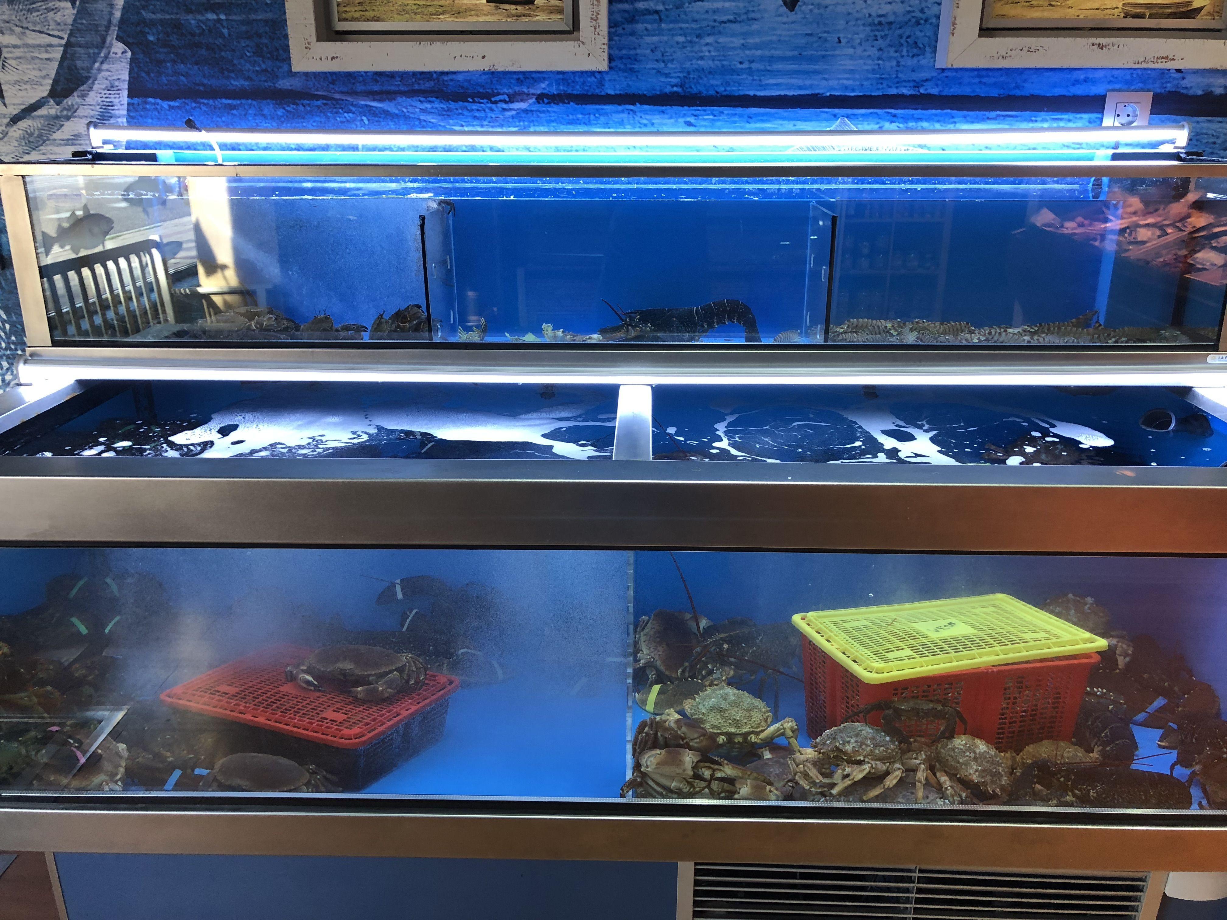Foto 3 de Venta de pescado y mariscos de calidad suprema en Valladolid | La Barquita de San Vicente