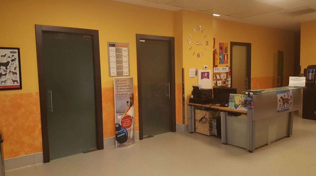 Foto 6 de Veterinarios en Utebo | Clínica Veterinaria Utebo
