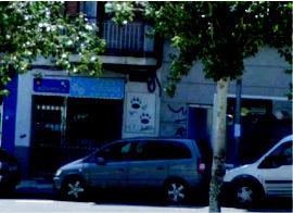Foto 1 de Veterinarios en San Sebastián de los Reyes | Clínica Veterinaria Huellas