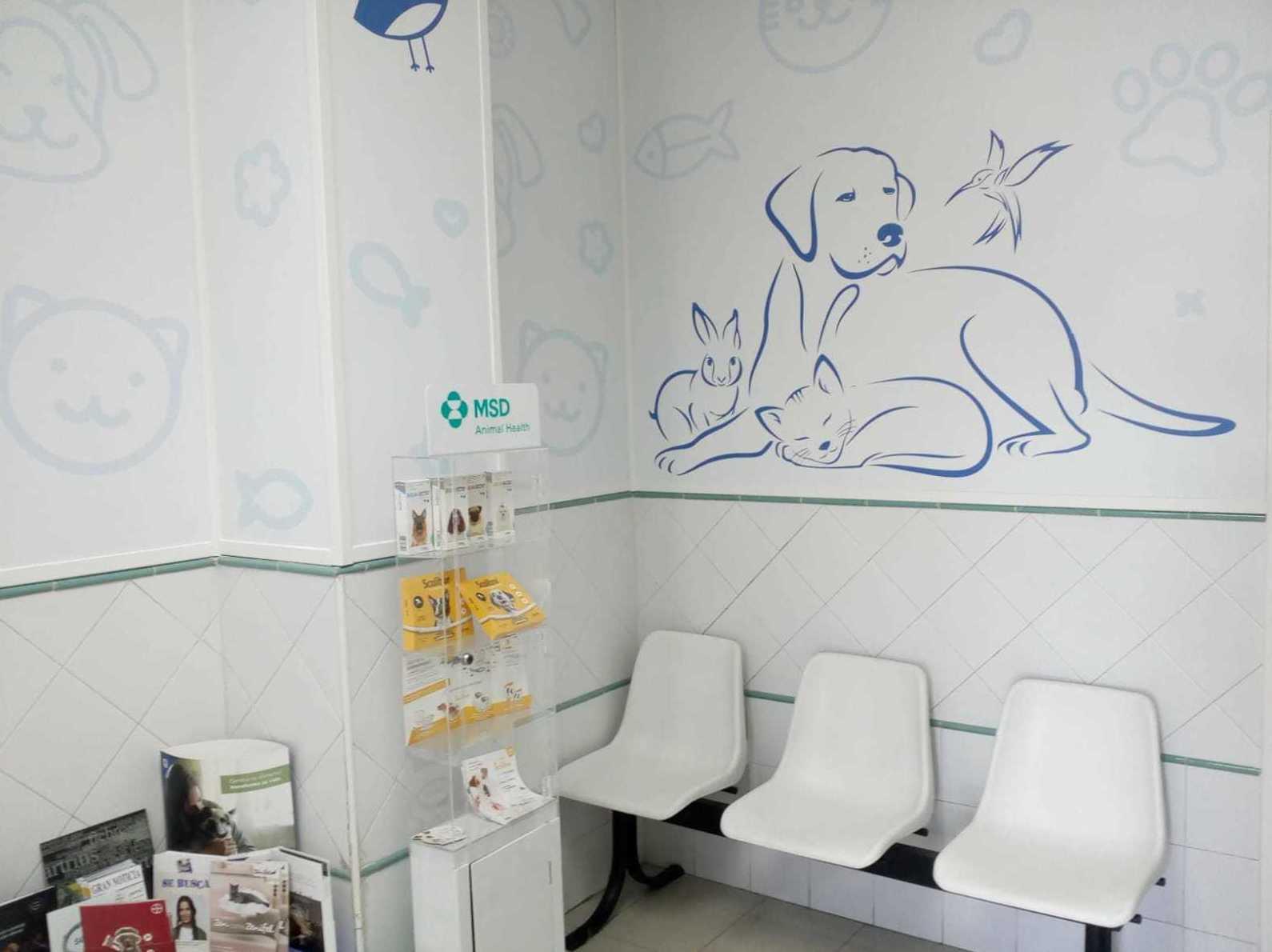 Foto 4 de Veterinarios en Toledo | Clínica Veterinaria Albeitar