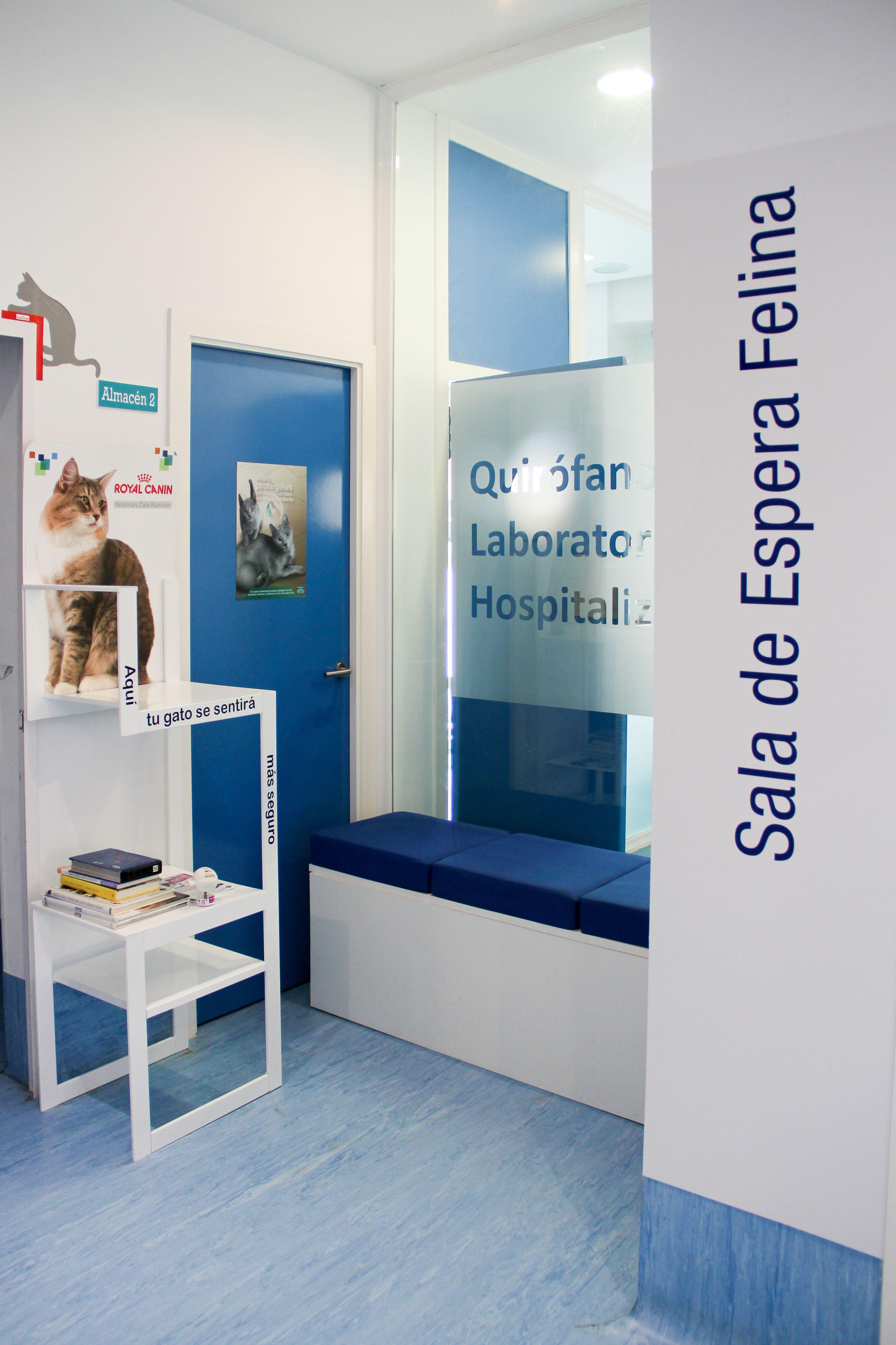 Foto 5 de Veterinarios en Madrid | Centro Veterinario Abrantes
