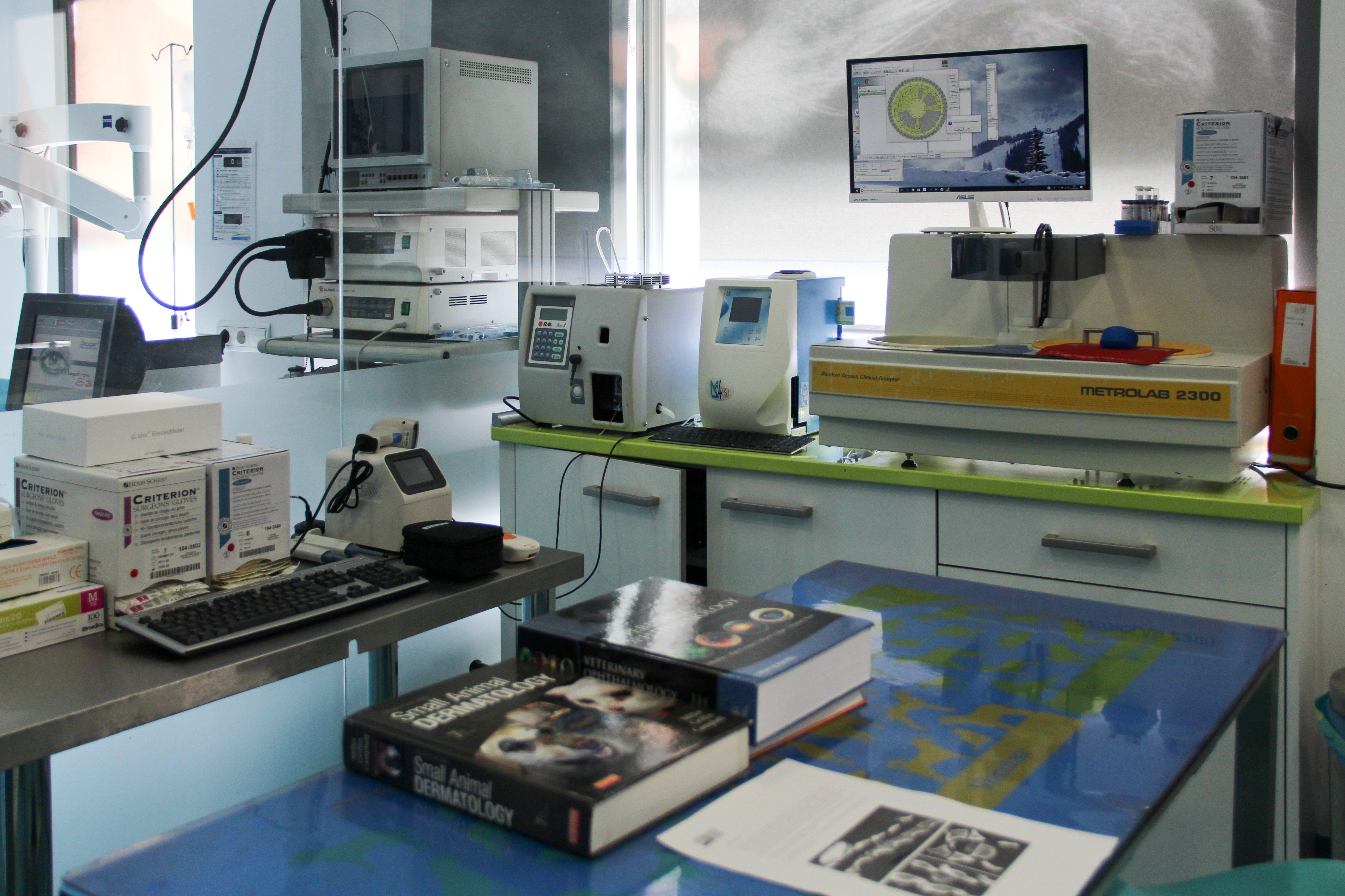 Foto 10 de Veterinarios en Madrid | Centro Veterinario Abrantes