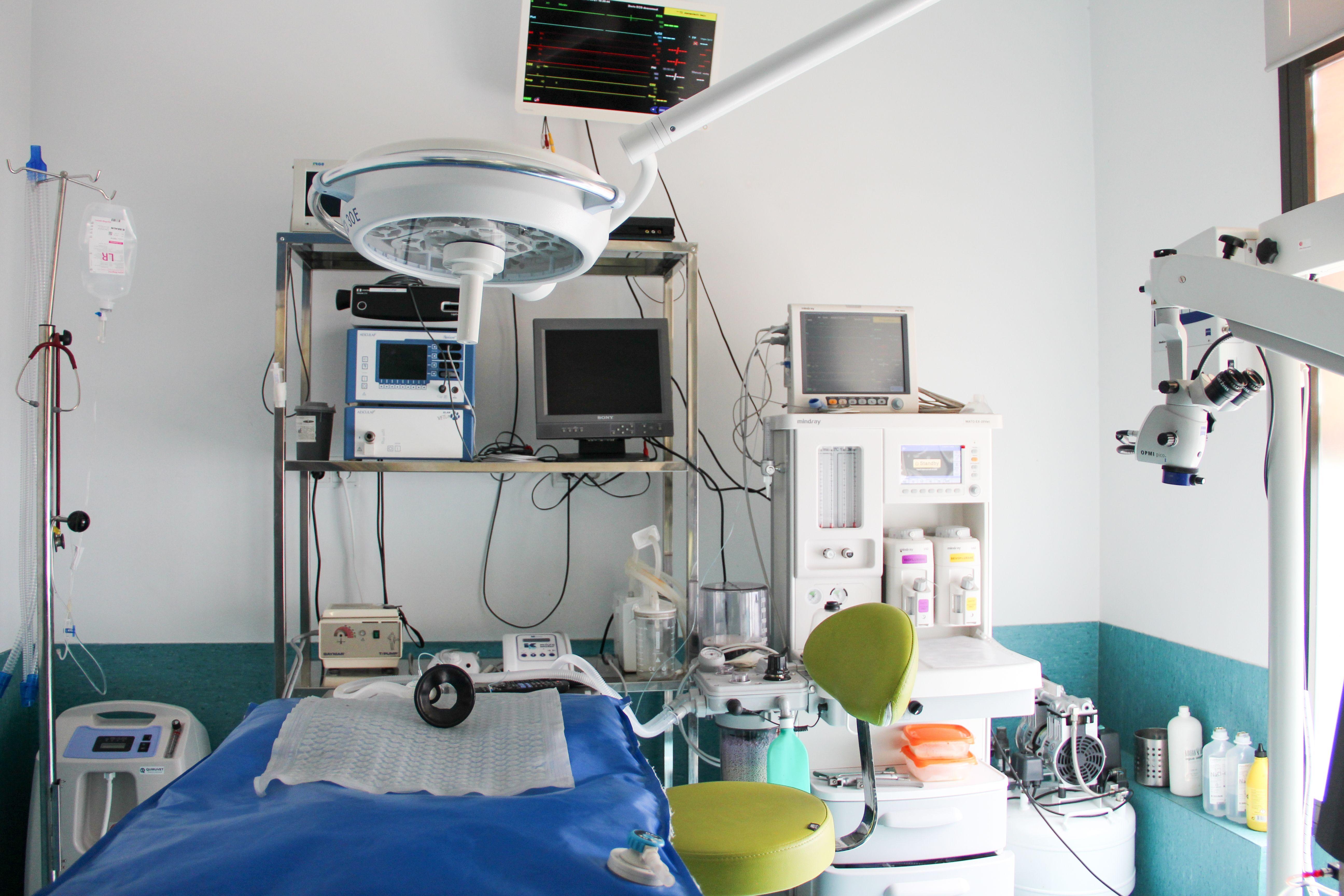 Foto 2 de Veterinarios en Madrid | Centro Veterinario Abrantes