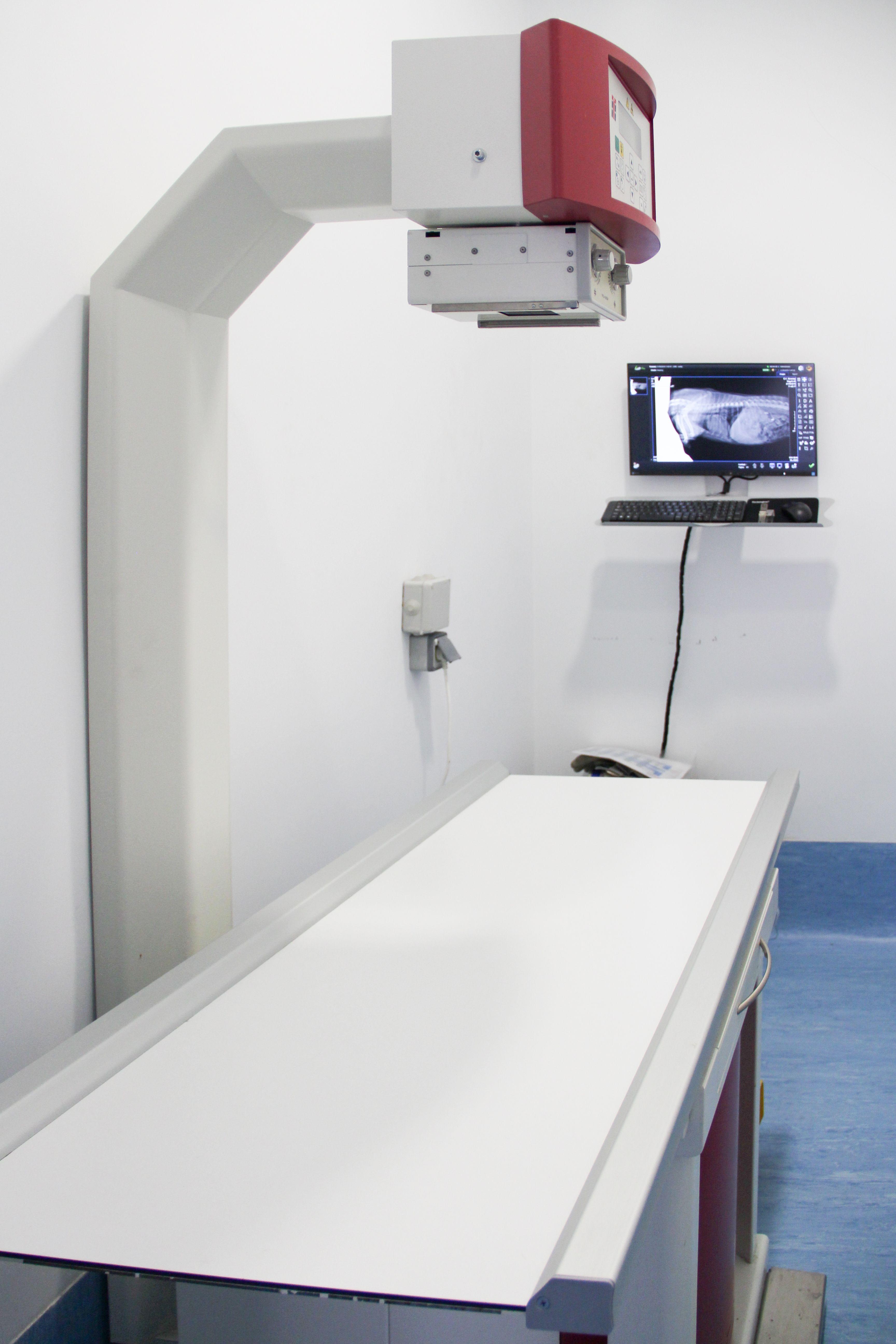 Foto 1 de Veterinarios en Madrid | Centro Veterinario Abrantes