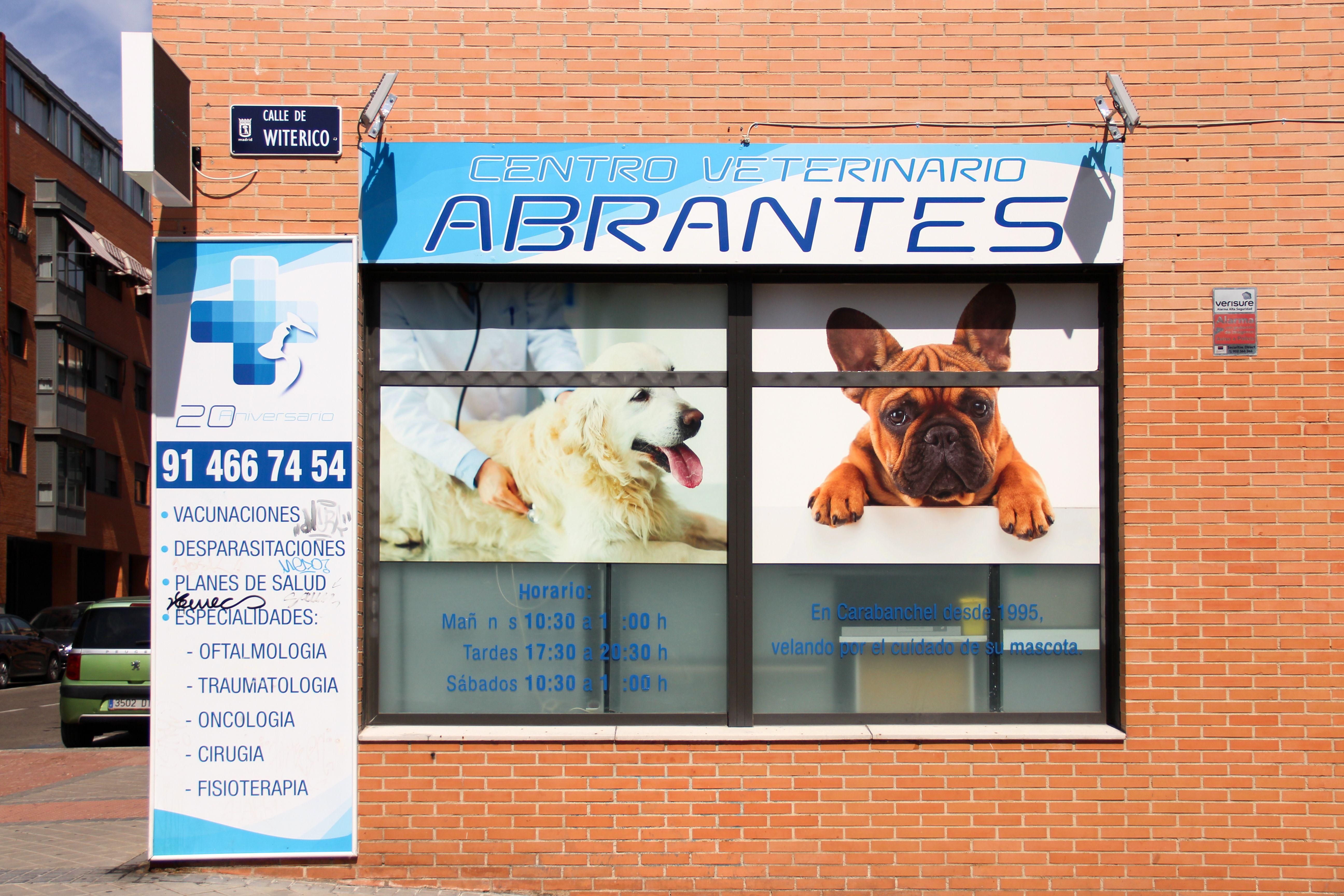 Foto 9 de Veterinarios en Madrid | Centro Veterinario Abrantes