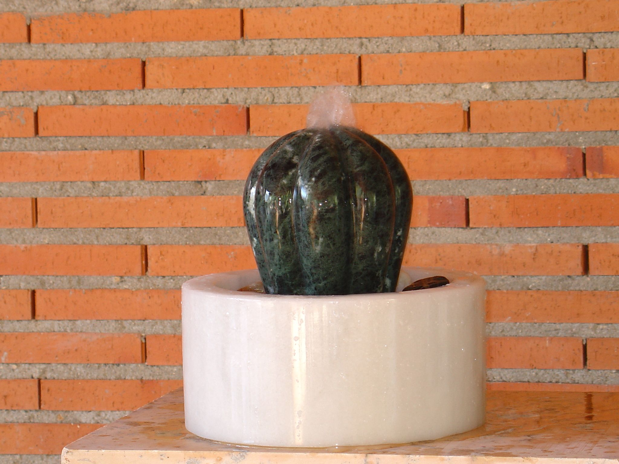 Fuente del cactus