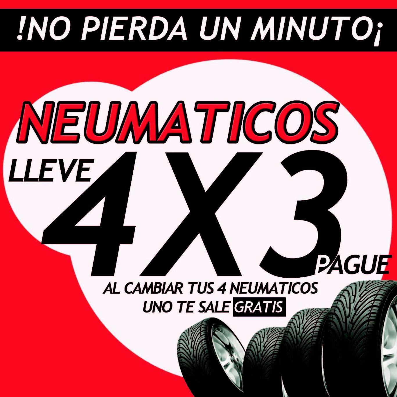 RUEDAS 4X3