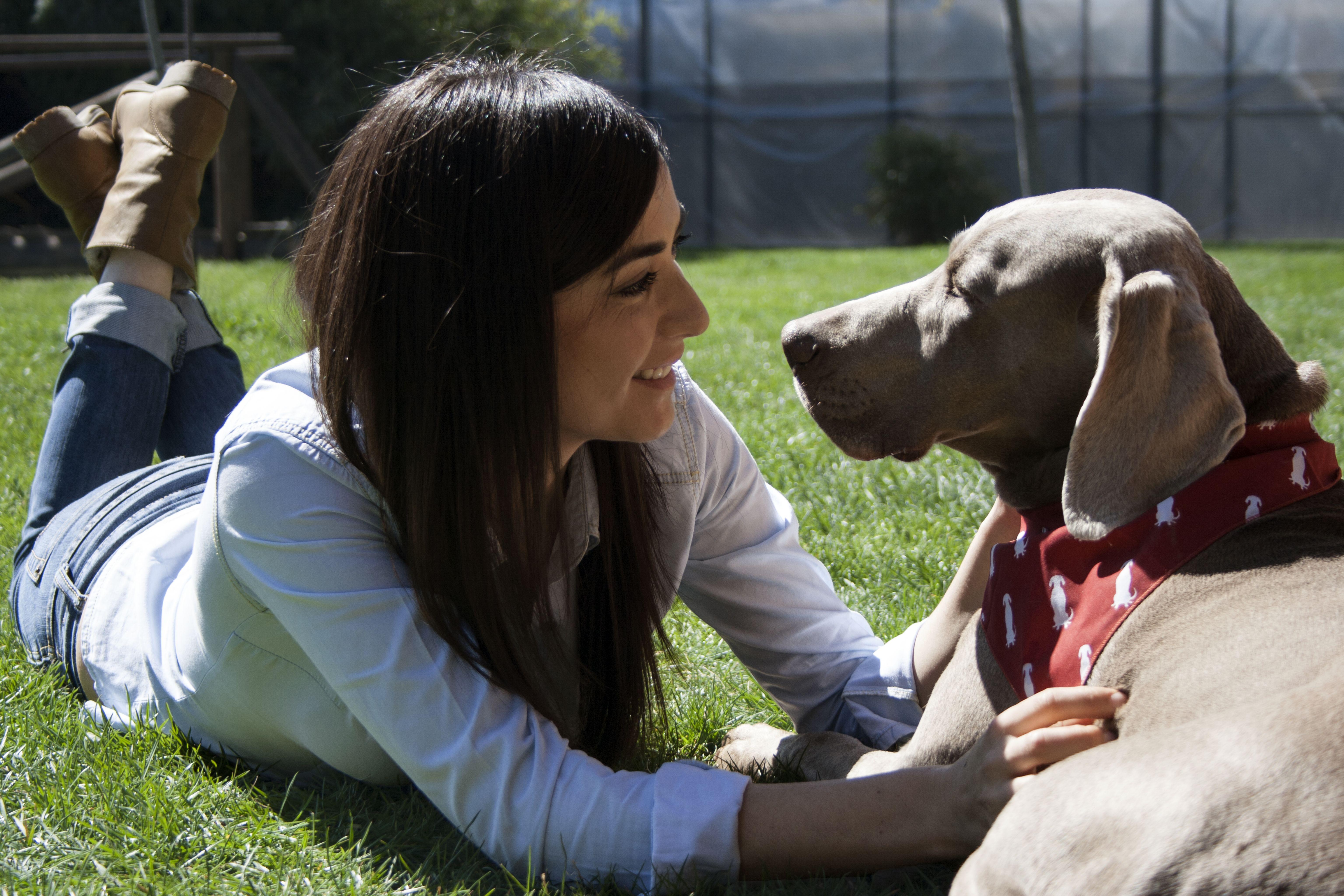 Foto 17 de Especialistas en animales exóticos en Ciudad Real | Hospital Veterinario Ciudad Real