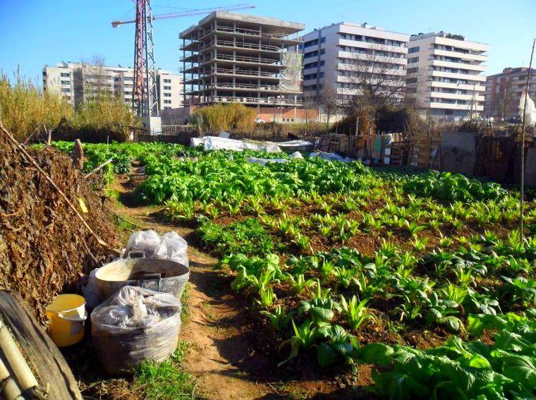 Foto 26 de Solares y terrenos en Madrid | Huertos Azor