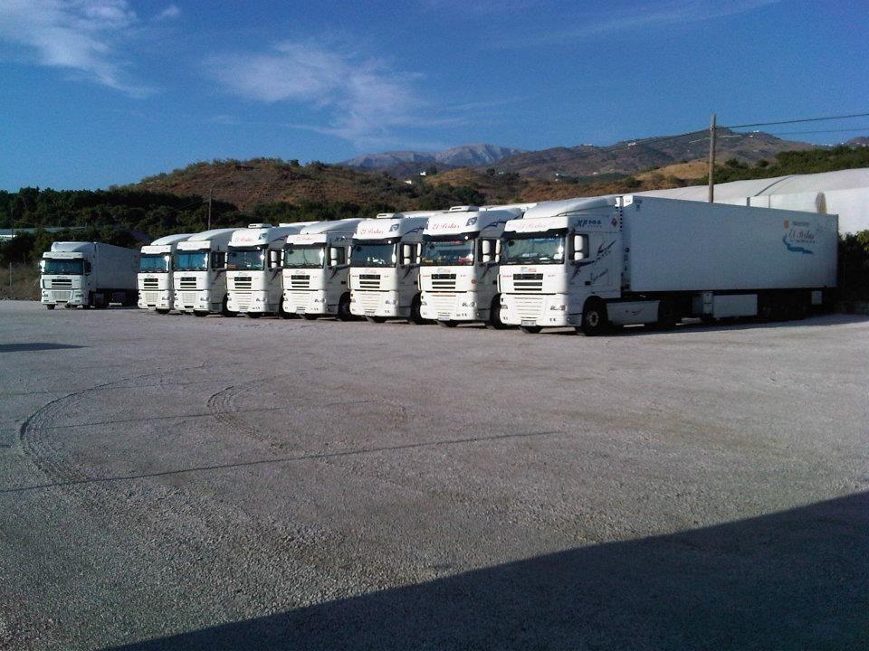 Transporte internacional de mercancías en Málaga