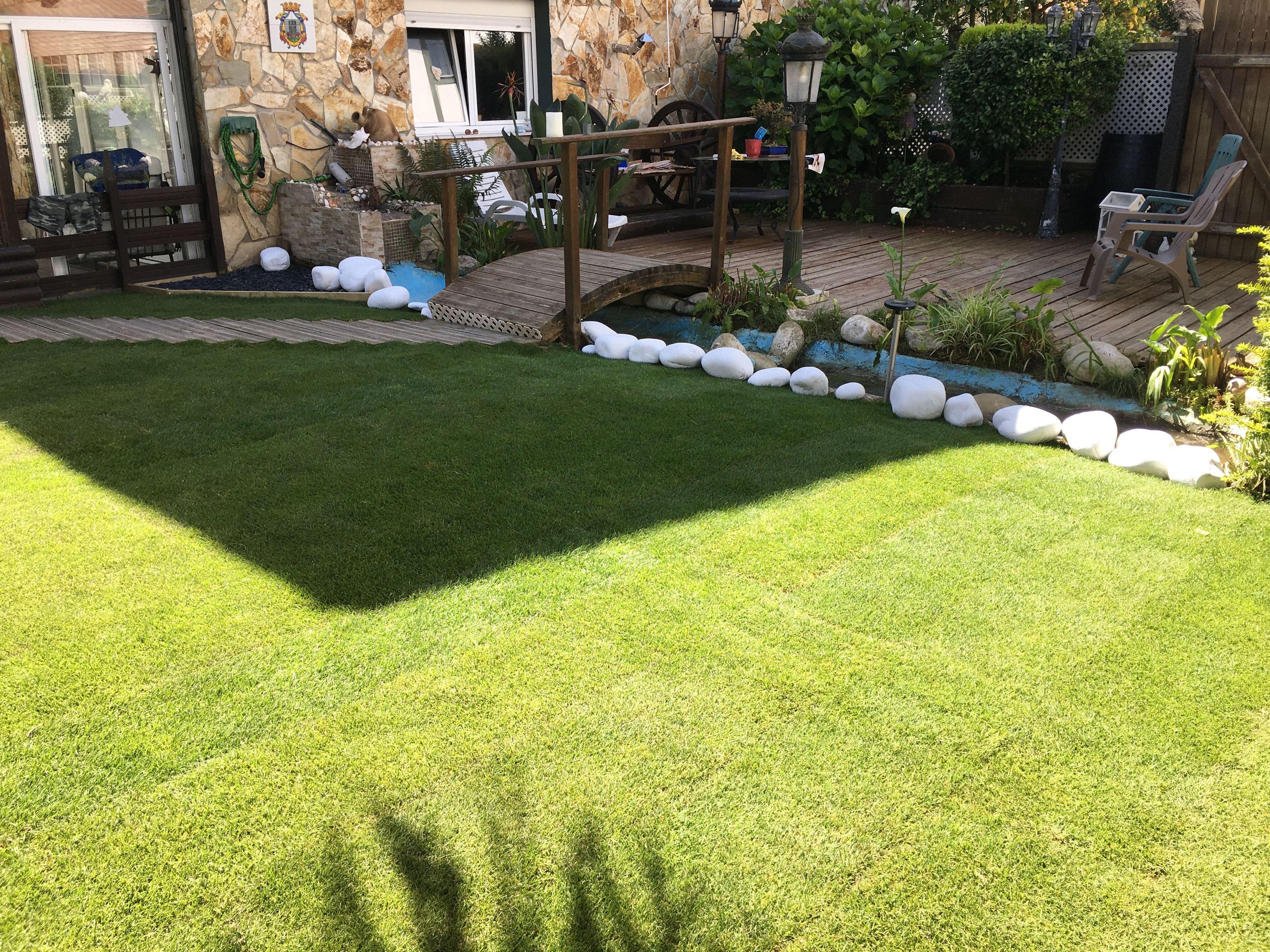 Foto 5 de Jardines (diseño y mantenimiento) en Vitoria-Gasteiz | Indoor Garden