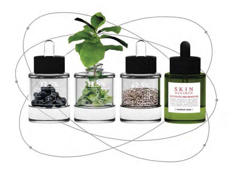 Skin Regimen - Desactiva el envejecimiento activa la longevidad: Alta Cosmética Natural de Sostenible Beauty Concepts