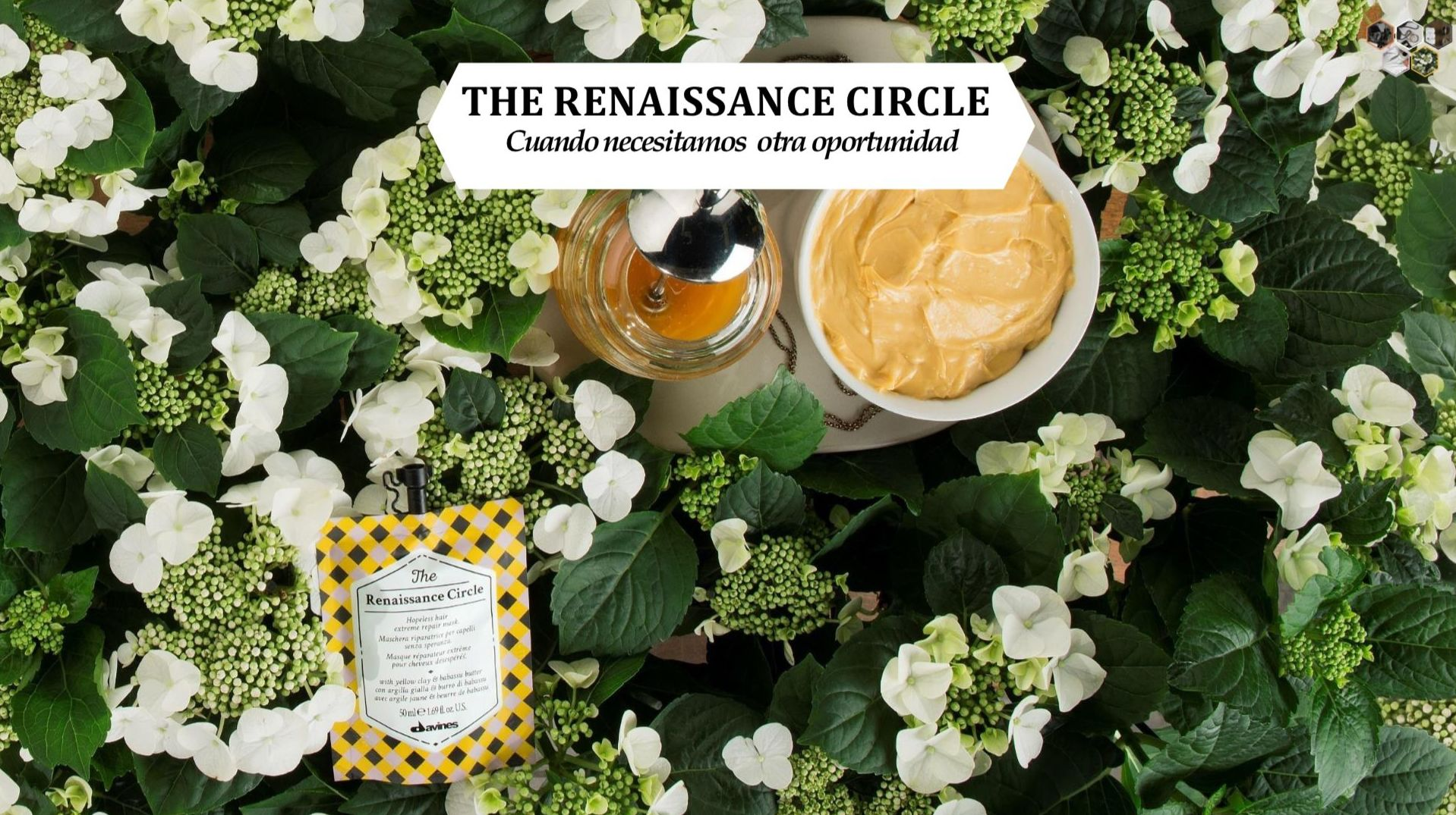 THE RENAISSANCE CIRCLE: Alta Cosmética Natural de Sostenible Beauty Concepts