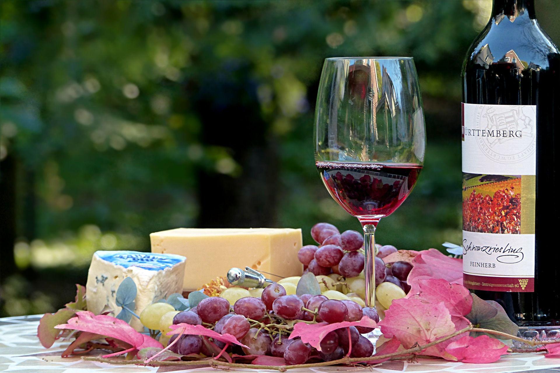Los mejores vinos D.O. La Rioja