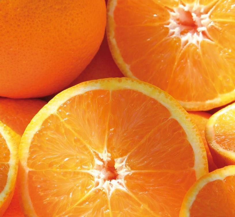 Naranjas y mandarinas: Productos frescos  de Frutas Rocalla