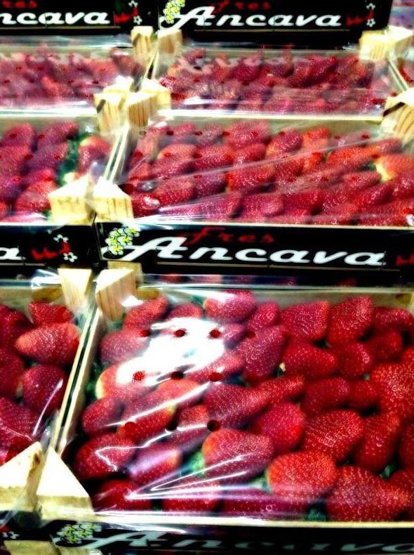 Compra venta de frutas y verduras al por mayor en Almería