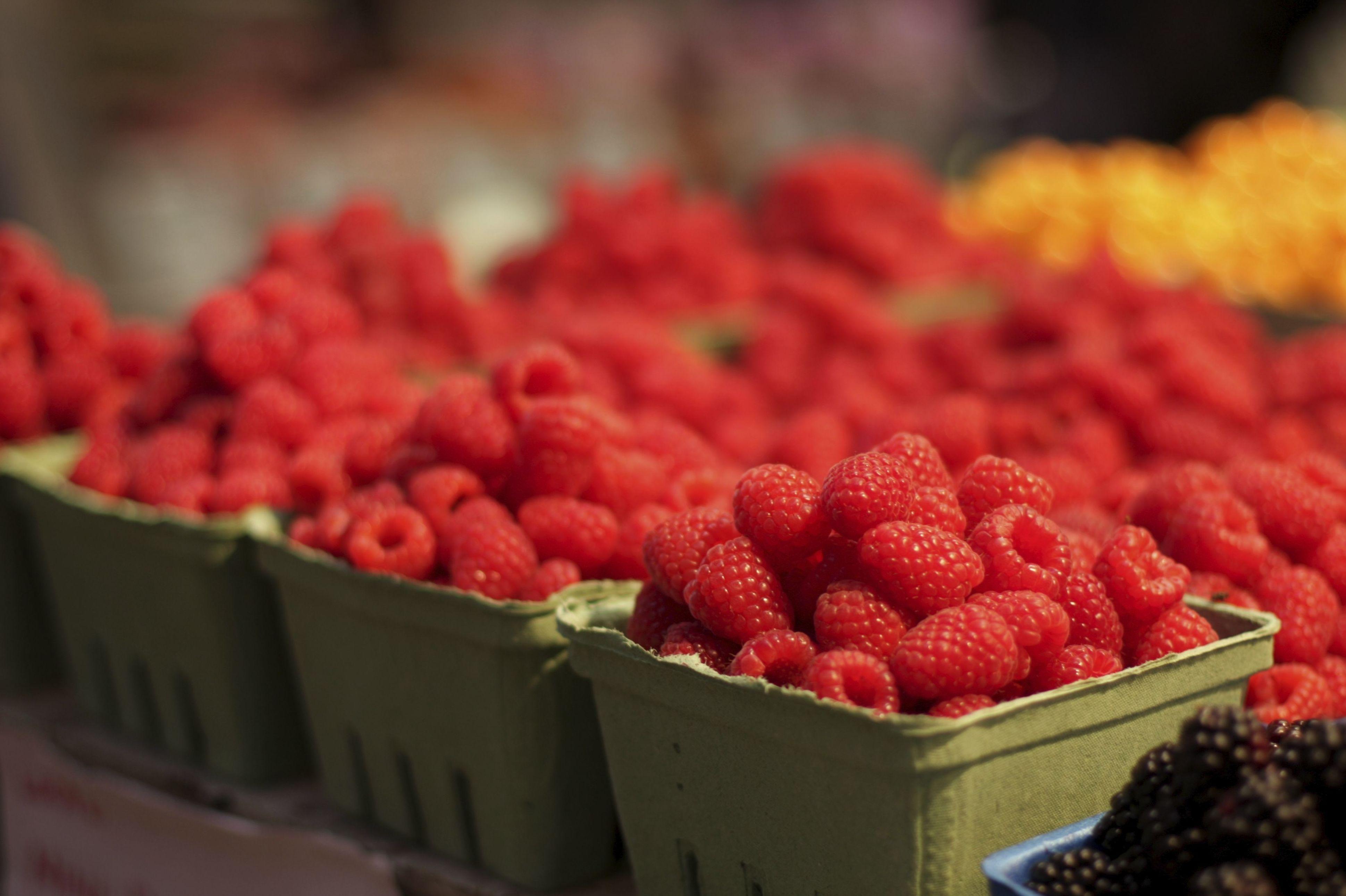 Mayorista de frutas en Almería