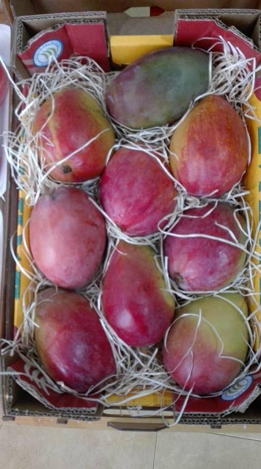 Mango: Productos frescos  de Frutas Rocalla