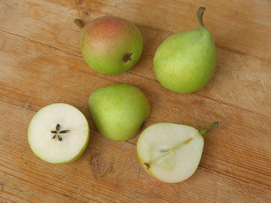Pera ercolina: Productos de Mundifruit