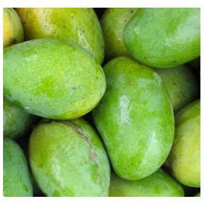 Mangos: Productos de Mundifruit
