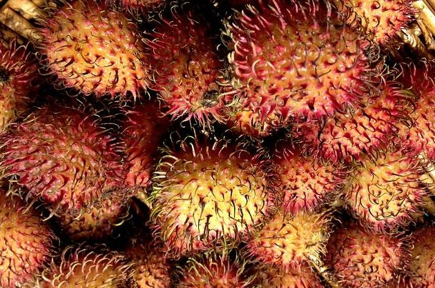 Rambután: Productos de Mundifruit