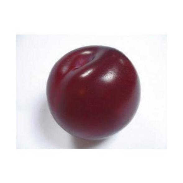 Ciruelas: Productos de Mundifruit