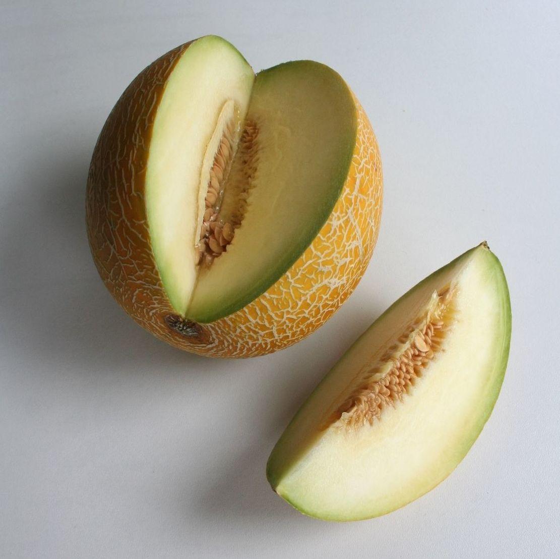 Melón Galia: Productos de Mundifruit