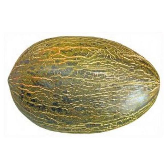 Melón: Productos de Mundifruit