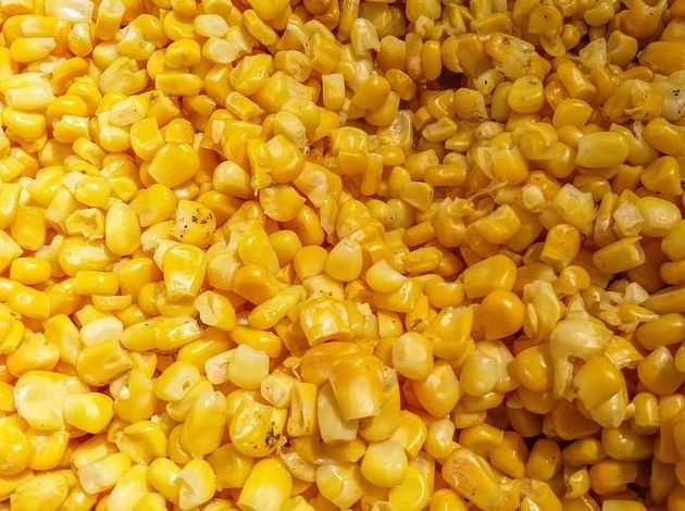 Maíz dulce: Productos de Mundifruit