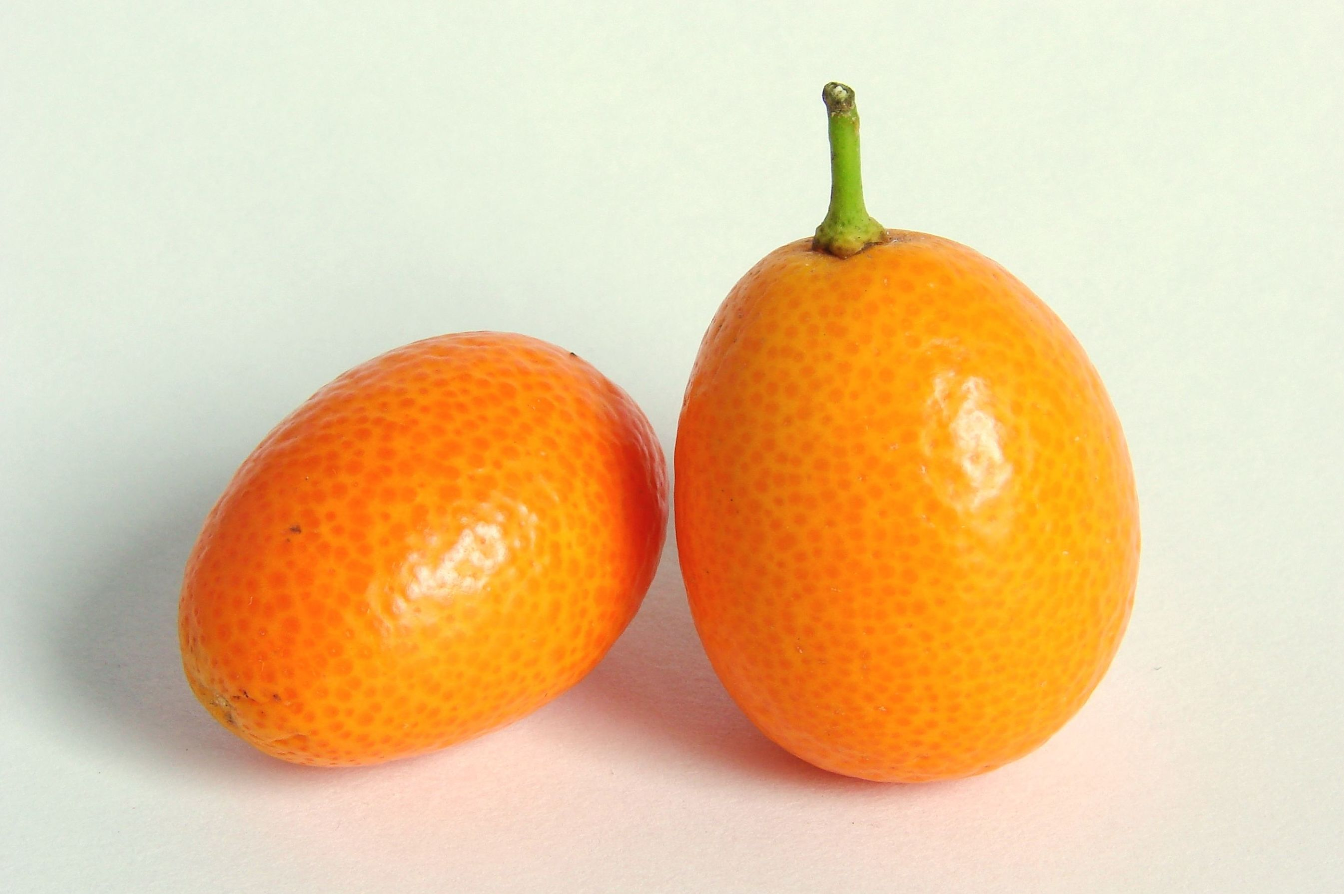Kumquat: Productos de Mundifruit