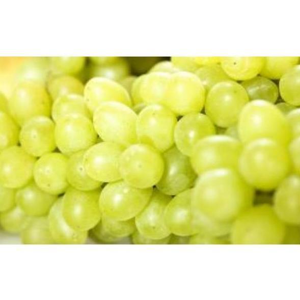 Uvas: Productos de Mundifruit