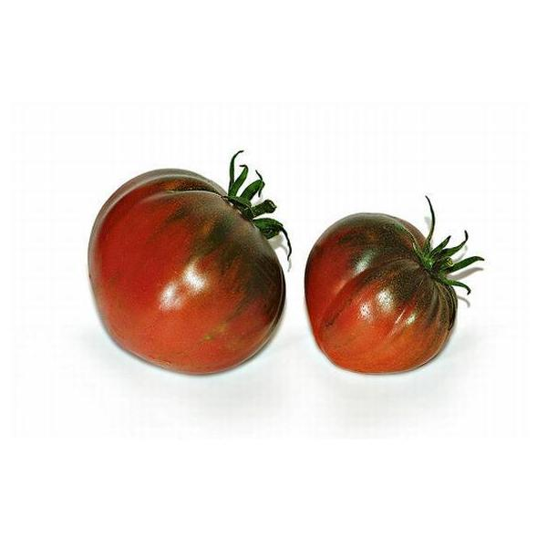 Tomate Raft: Productos de Mundifruit
