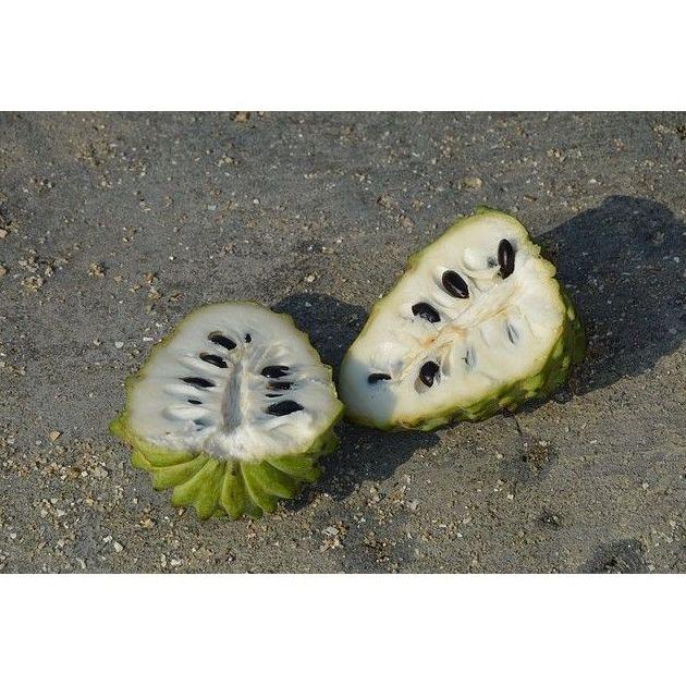 Chirimoya: Productos de Mundifruit