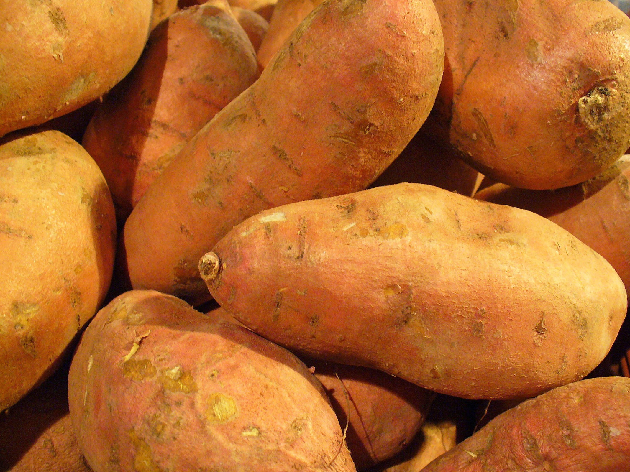 Batata: Productos de Mundifruit