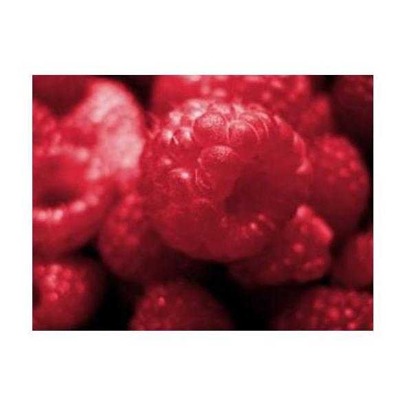 Frambuesas: Productos de Mundifruit